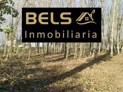 Parcela rústica en venta en Ponferrada zona Dehesas, rebajada