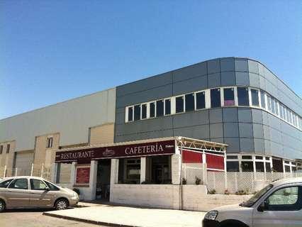 Nave industrial en venta en El Ejido, rebajada