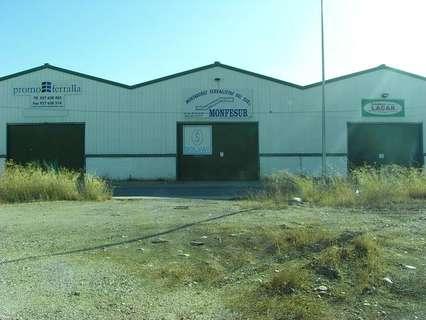 Nave industrial en venta en La Carlota