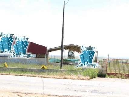 Nave industrial en venta en Sierra de Fuentes, rebajada