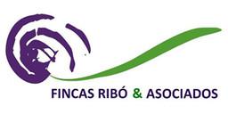 logo Inmobiliaria Fincas Ribo Asociados