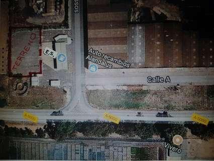 Parcelas rústicas en alquiler en Huelva
